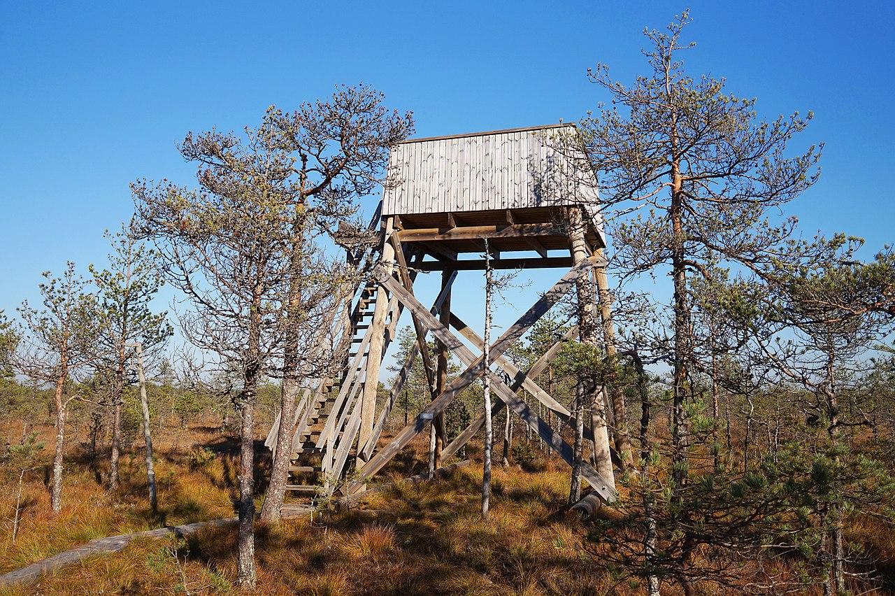 Leivonmäki National Park