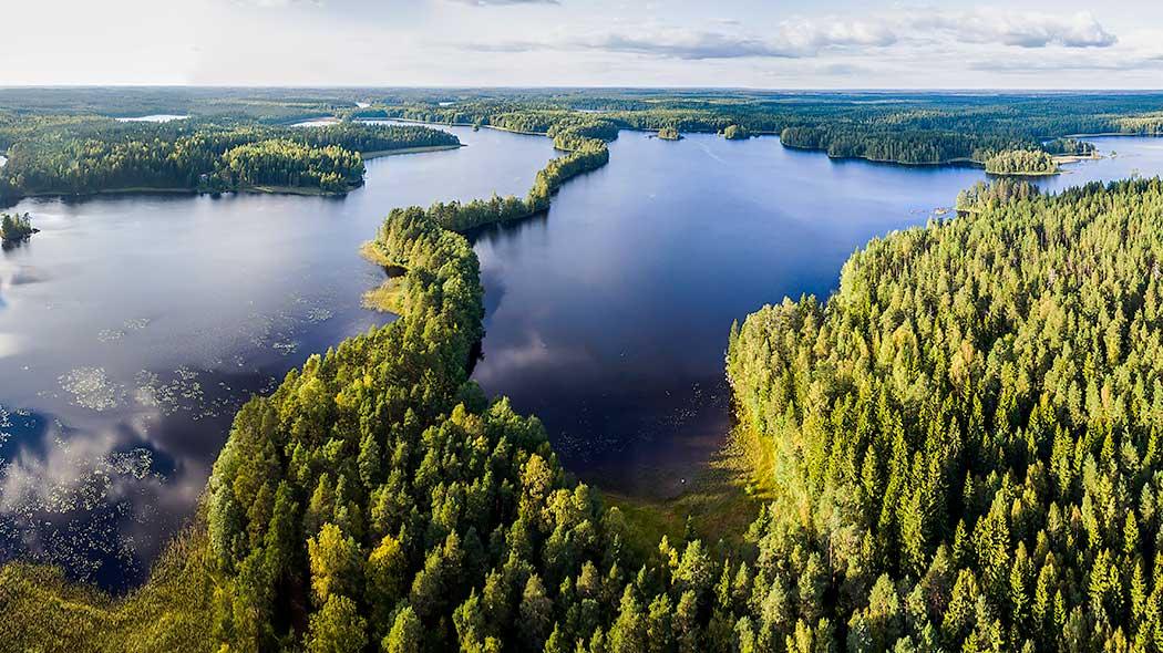 Liesjärvi National Park