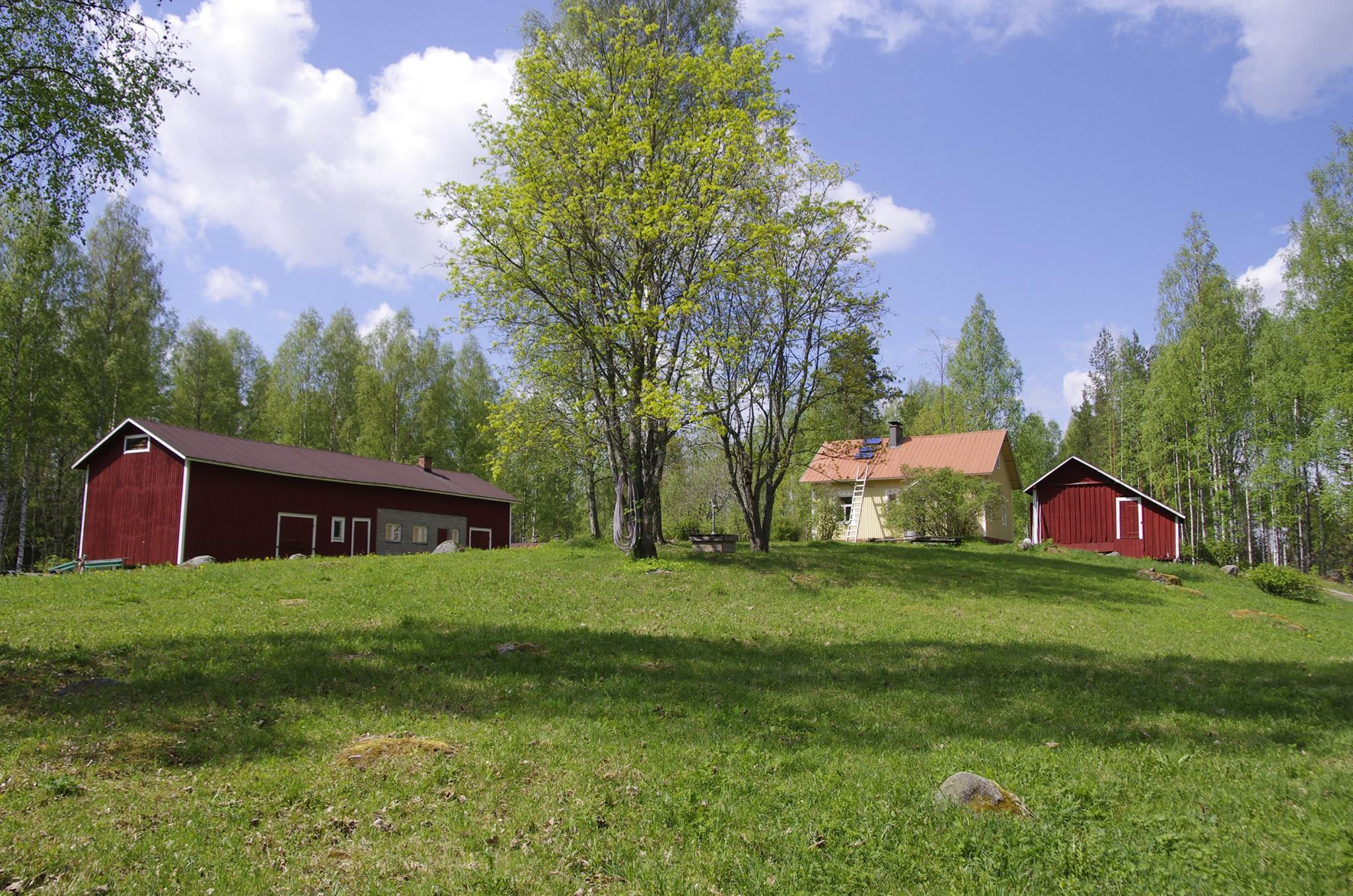 Kolovesi National Park
