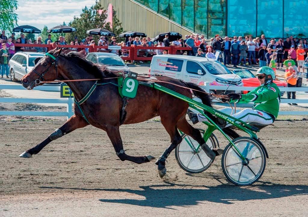 Sorsasalo Racetrack Kuopio