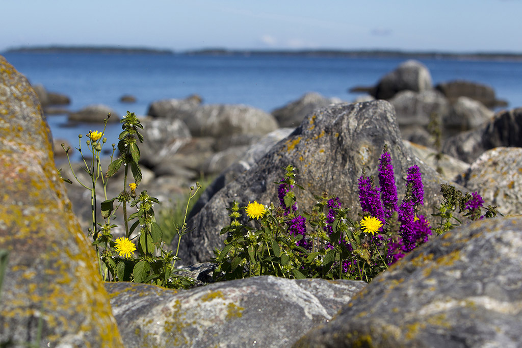 Kvarken Archipelago - photo © MEK Finnish Tourism Board