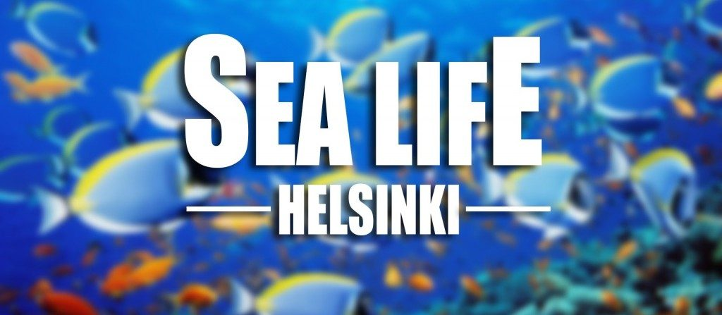 Family Vacations in Finland | Sea Life Helsinki