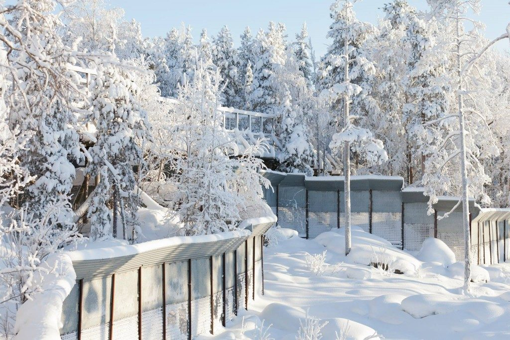 Ranua Wildlife Park - Family Vacations in Finland