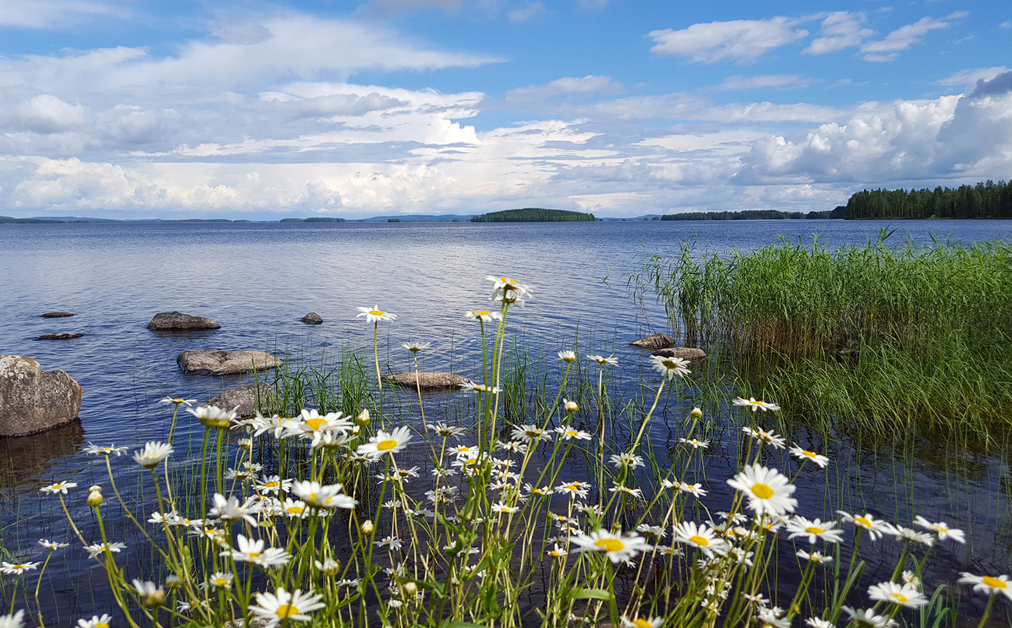 nature attractions finland wildlife national parks discoveringfinland