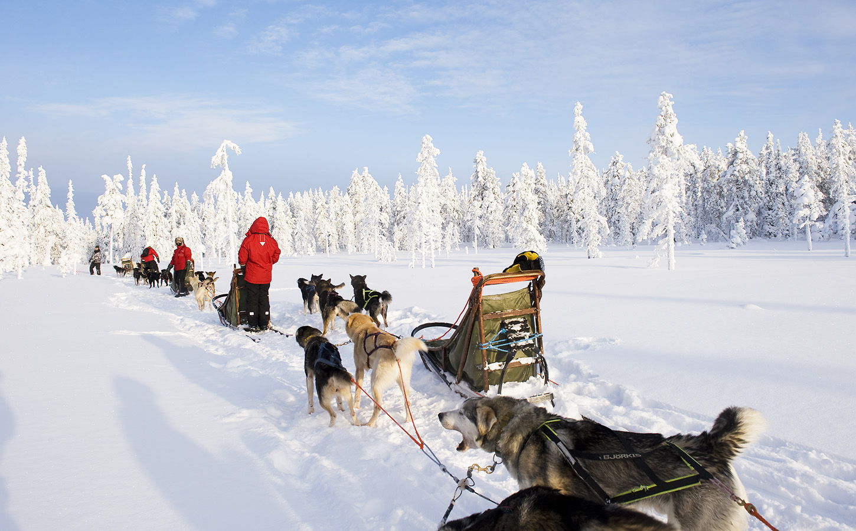 Safaris Finland Winter Activities Discovering Finland