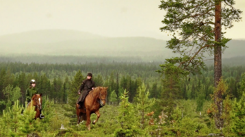 Horse Riding Finland, Finnish Riding Clubs & Stables