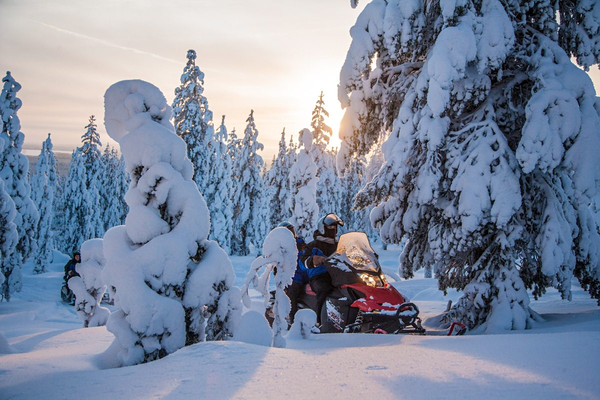 Two Hour Snowmobiling Safari in Rovaniemi Rovaniemi ...
