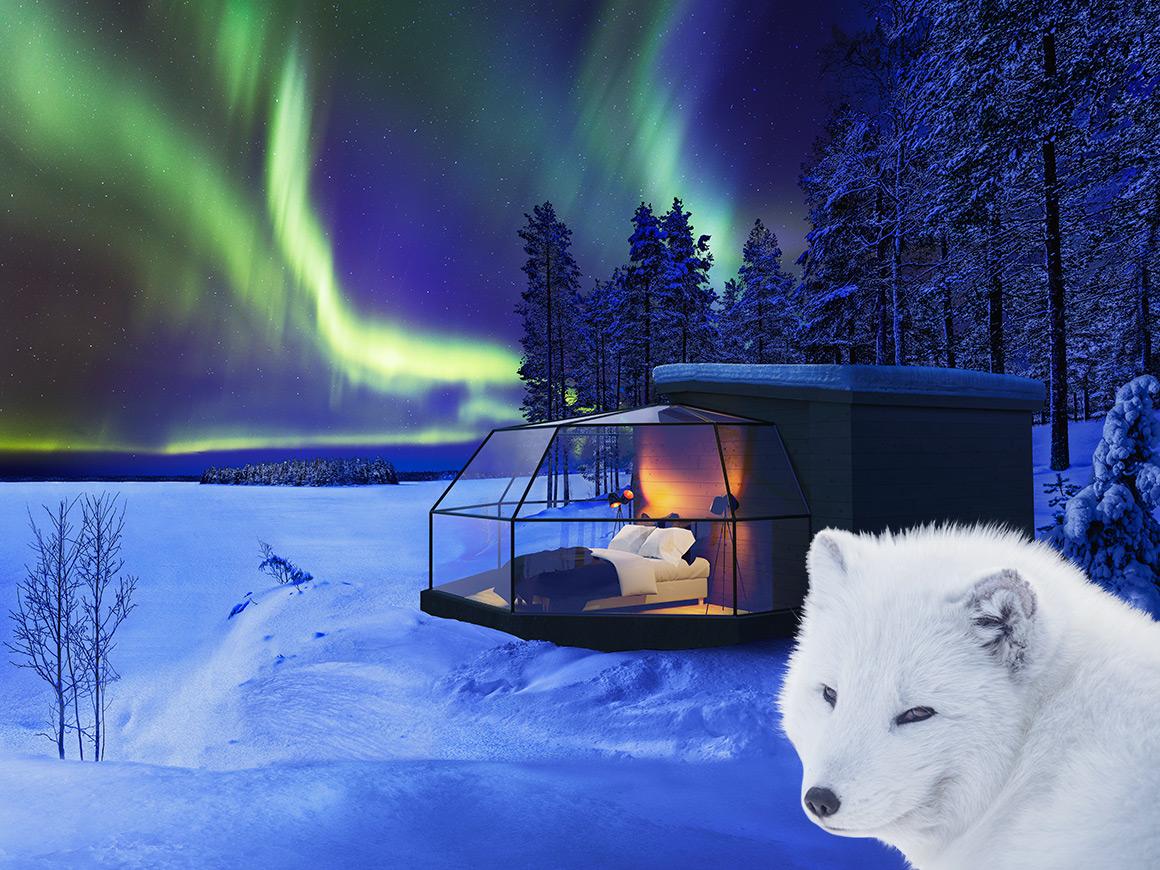 Arctic Fox Igloos Ranua